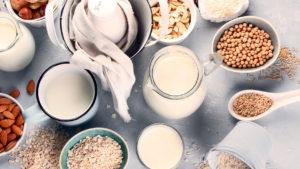 Alimentos que contêm e não contêm Lactose