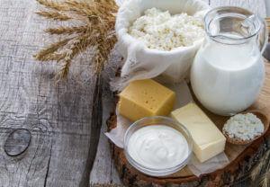 relação entre a intolerância à lactose e os probióticos